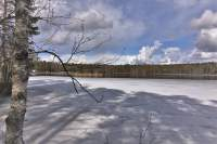 Elamonjärvi